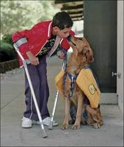 Thumbnail image for Service Animals (2).jpg